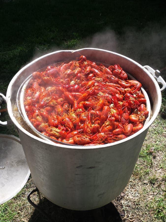 De Rivierkreeften van New Orleans koken stock afbeelding