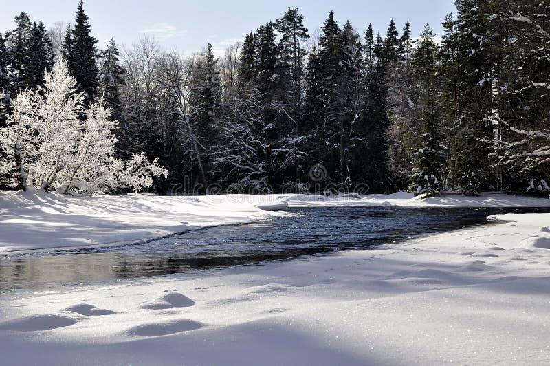 De rivierlandschap van de winter stock foto