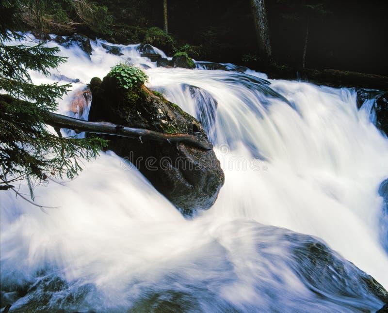 De rivierrots van de berg stock afbeelding