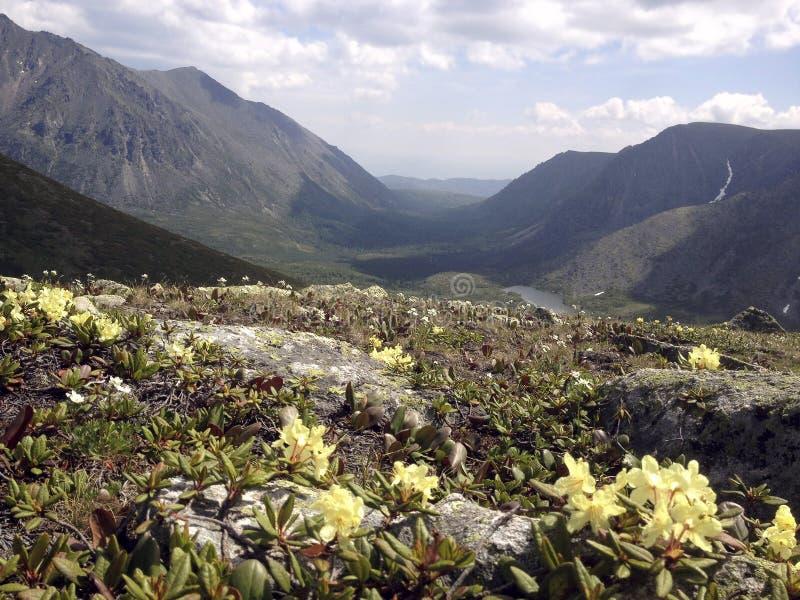 De riviervallei van de landschapsberg in de rand van Nesteriha Bargusinsky bij meer Baikal royalty-vrije stock afbeelding