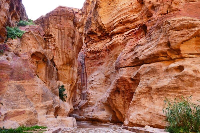 ` De Rocky Canyon el ` de Siq en la ciudad perdida del Petra, Jordania imágenes de archivo libres de regalías
