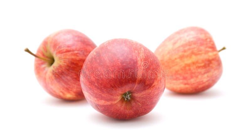De rode appelen van de boom stock afbeelding