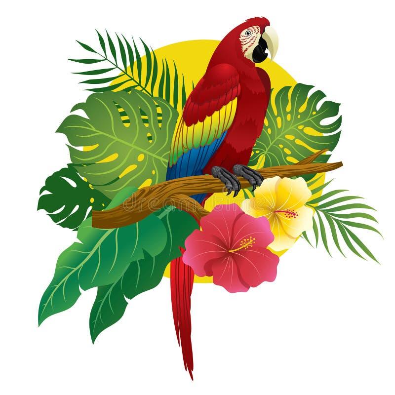 De rode ara zit op tak van boom royalty-vrije illustratie