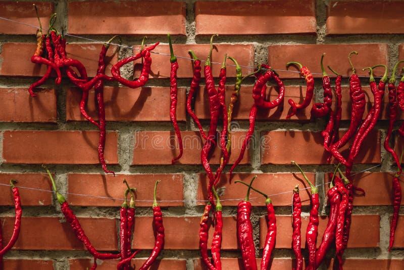 De rode Bakstenen muur van Chili Peppers Hanged Against Red stock afbeeldingen