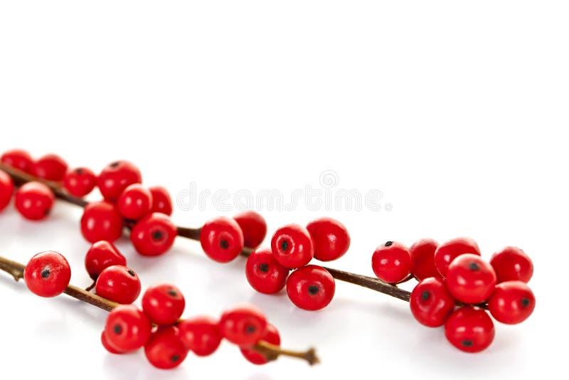 De rode bessen van Kerstmis stock fotografie