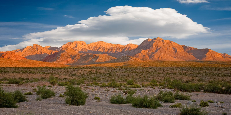 De rode Canion van de Rots, Nevada royalty-vrije stock fotografie
