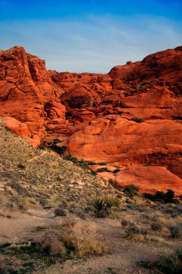 De rode Canion van de Rots, Nevada royalty-vrije stock afbeeldingen