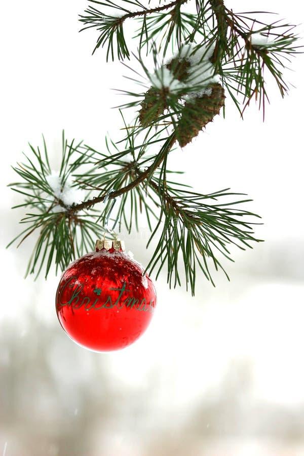 De rode decoratie van Kerstmis op snow-covered pijnboomboom in openlucht stock foto's