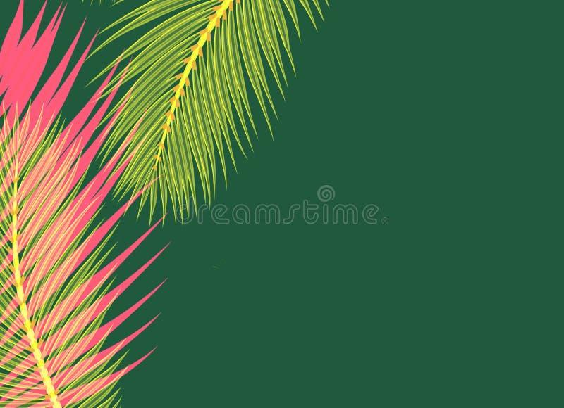 De rode gele Palmen doorbladert groen concept als achtergrond royalty-vrije illustratie