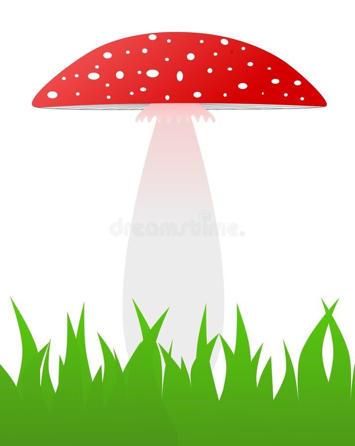De rode giftige paddestoel groeit in gras - illustratie royalty-vrije stock afbeelding