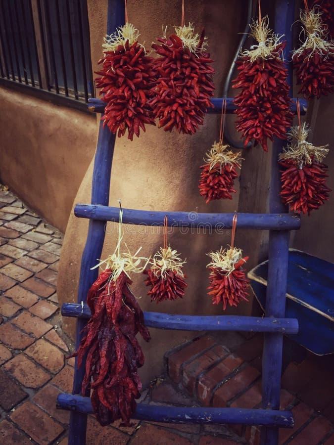 De rode Peper van de Spaanse peper stock foto's