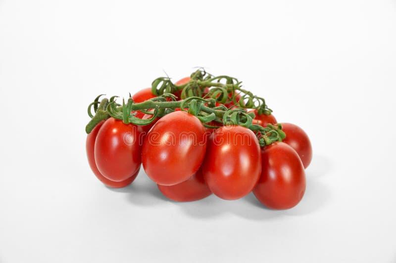 De rode rijpe tomaten op groene lijn sluiten omhoog wit stock foto
