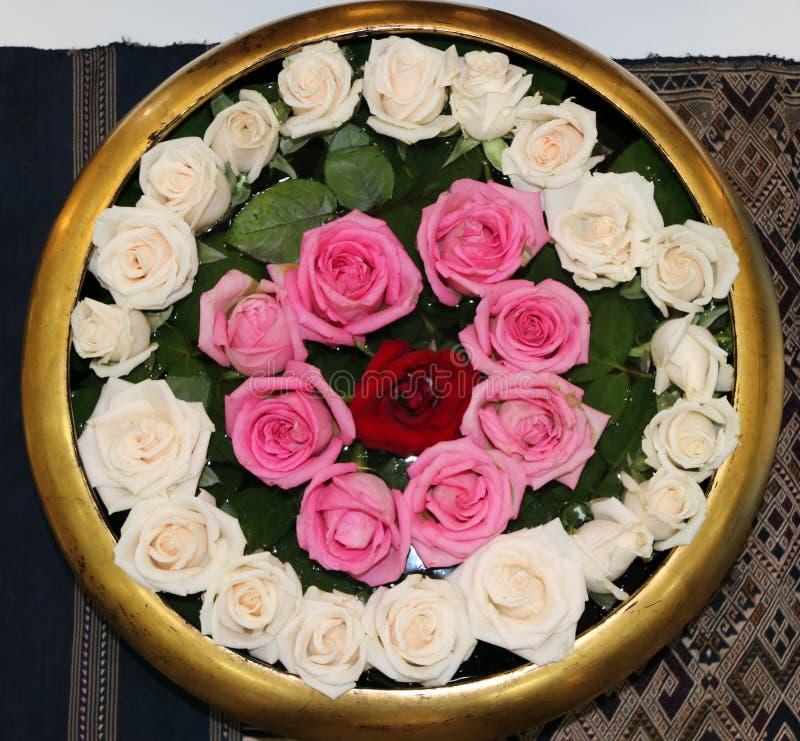De rode roze en witte kleur van nam op het water in de gouden mini ronde vijver toe royalty-vrije stock foto