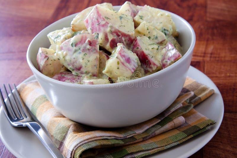 De rode Salade van de Aardappel van Dijon royalty-vrije stock afbeelding