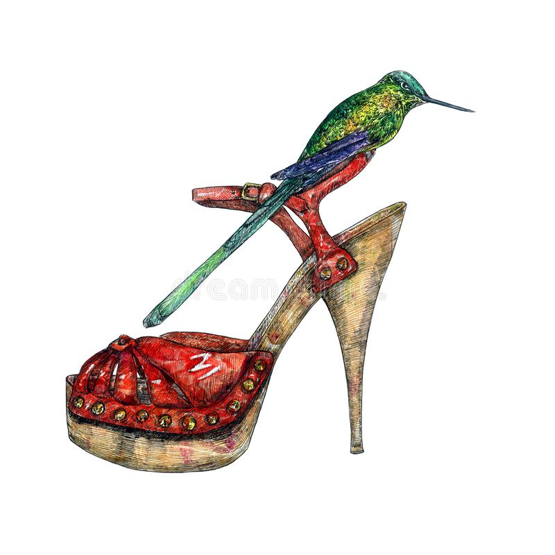 De rode schoenen van de leerhiel met groene kolibriezitting op het, hand geschilderde waterverf met inkttekening royalty-vrije illustratie