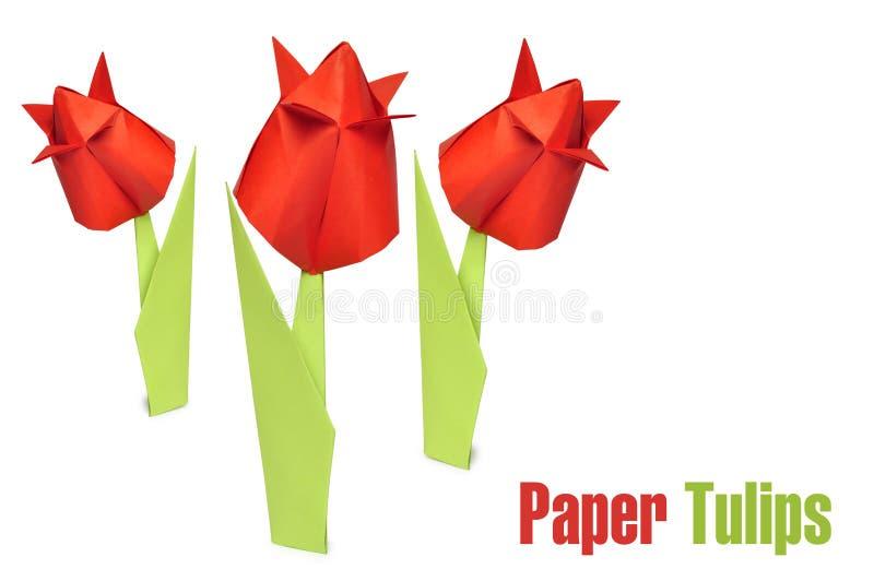 De rode tulpen van de origami stock foto
