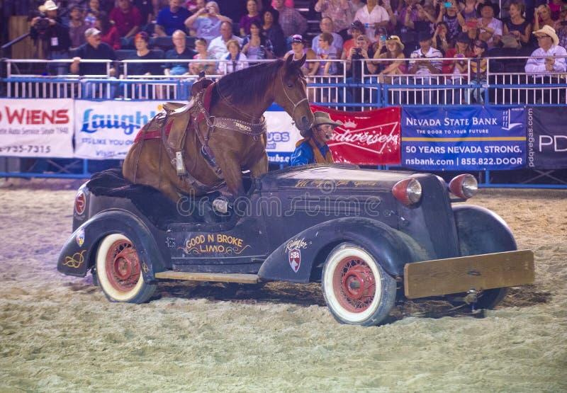 De rodeo van Helldoradodagen royalty-vrije stock foto's