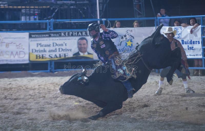 De rodeo van Helldoradodagen stock foto