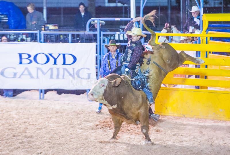 De rodeo van Helldoradodagen royalty-vrije stock afbeelding