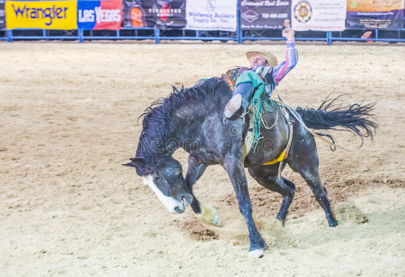 De rodeo van Helldoradodagen royalty-vrije stock fotografie