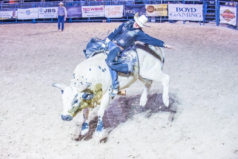 De rodeo van Helldoradodagen stock fotografie