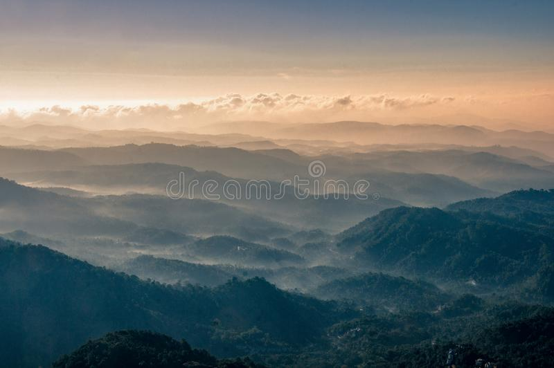 De rollende heuvels van Munnar-provincie, Kerala India stock afbeeldingen