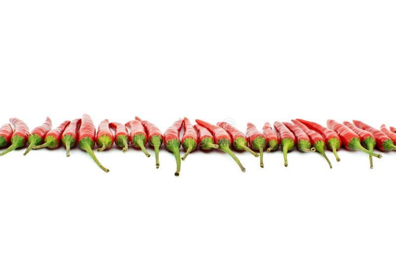 De roodgloeiende lijn van de Spaanse peperpeper royalty-vrije stock afbeelding