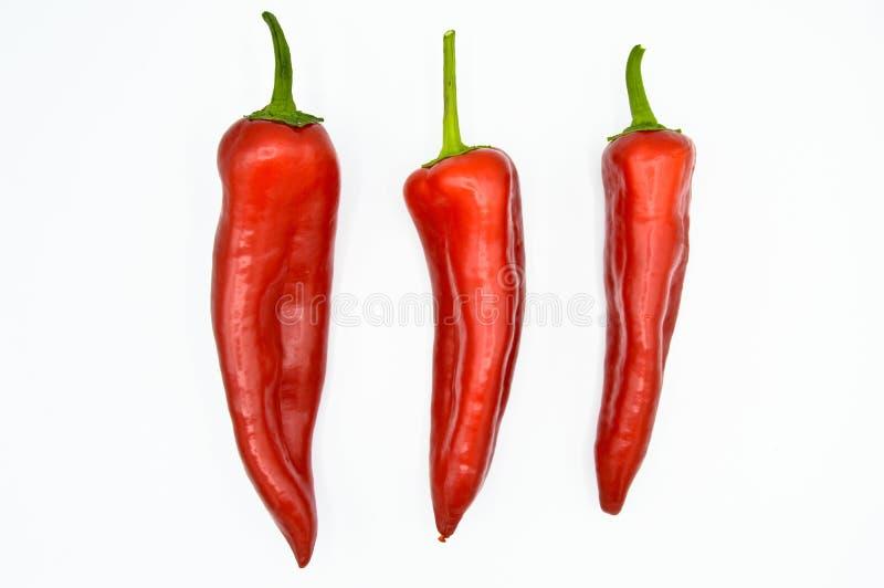 De roodgloeiende Peper van de Spaanse peper Zeer vers en helder stock afbeelding