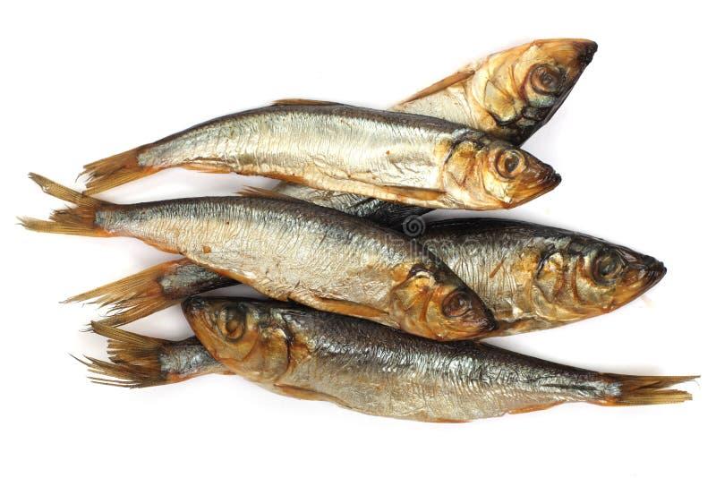 De rook-droge vissen sluiten omhoog royalty-vrije stock foto's