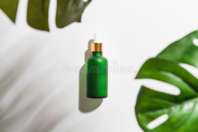 De room van de serumfles, model van het merk van het schoonheidsproduct Hoogste mening over de witte achtergrond royalty-vrije stock afbeeldingen