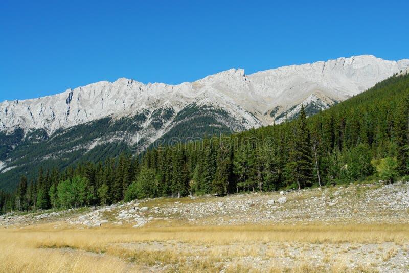 De rotsachtige bergen van de zomer stock foto