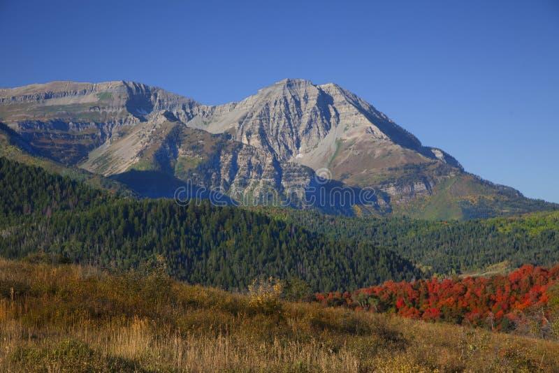 De rotsachtige Daling van de Berg stock fotografie