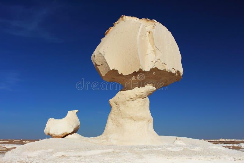 De rotsen van de kalksteenvorming als de paddestoel en de kip in het Witte Woestijn Natuurreservaat worden bekend, dicht bij Fara royalty-vrije stock foto