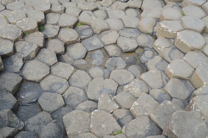De rotstextuur van de Verhoogde weg van reuzen, Ierland. stock afbeeldingen