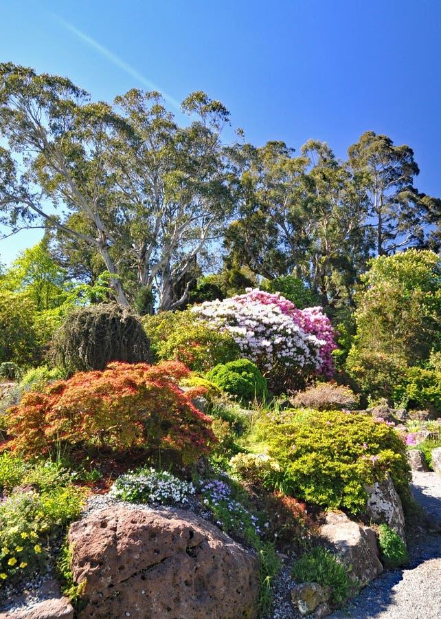 De Rotstuin bij de Botanische Tuinen van Christchurch royalty-vrije stock foto's