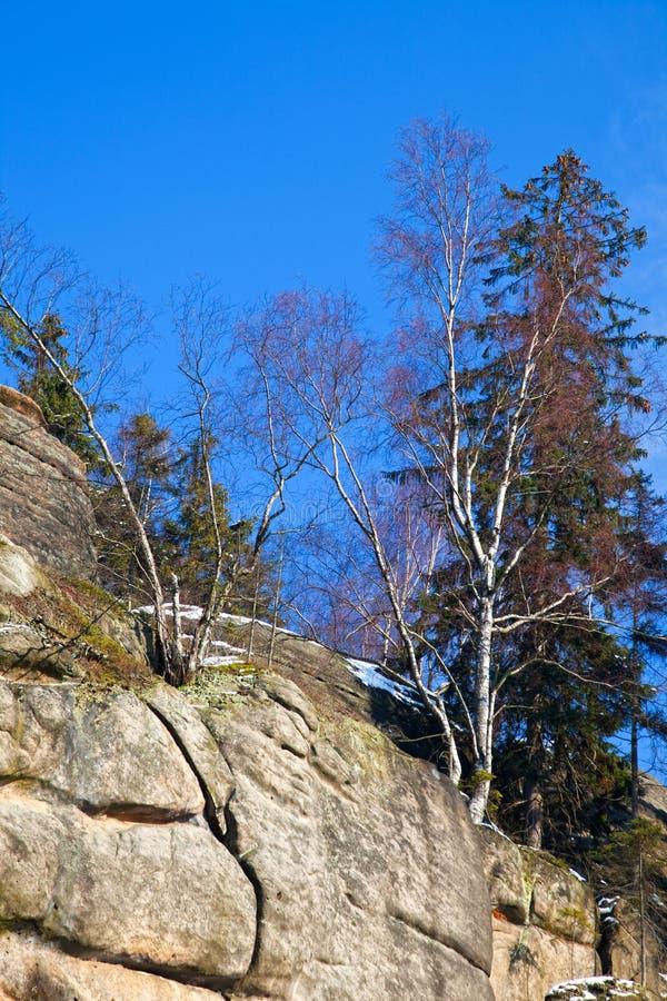De rotsvorming kent als Broumov-muren dichtbij Bromov in Czechia royalty-vrije stock foto
