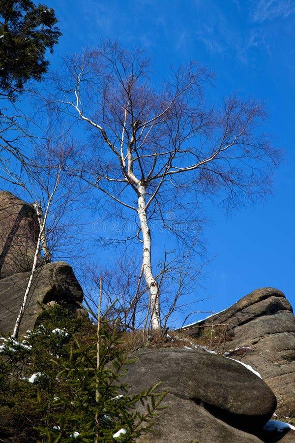 De rotsvorming kent als Broumov-muren dichtbij Bromov in Czechia royalty-vrije stock fotografie