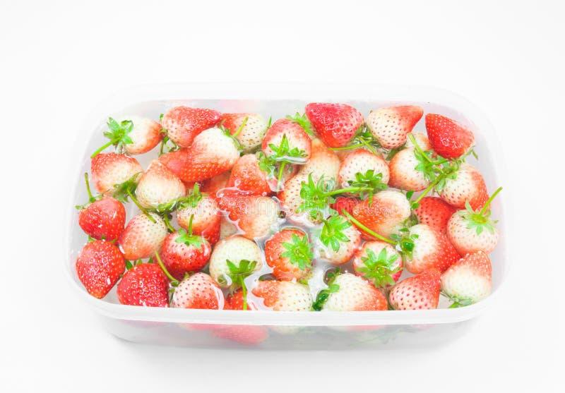 De rouge fraise fraîchement à l'intérieur d'eau froide, plan rapproché doux de fraises de ressort photo libre de droits