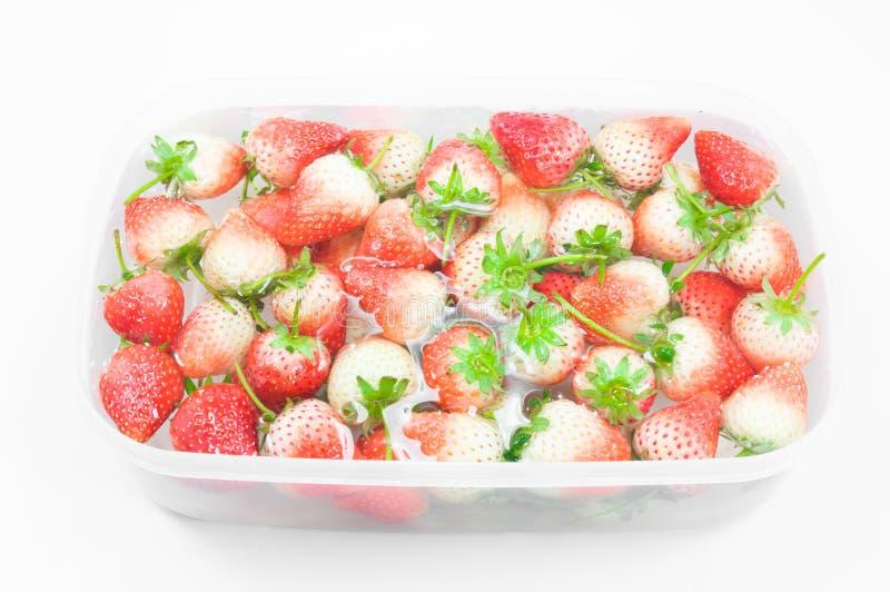 De rouge fraise fraîchement à l'intérieur d'eau froide, plan rapproché doux de fraises de ressort image stock