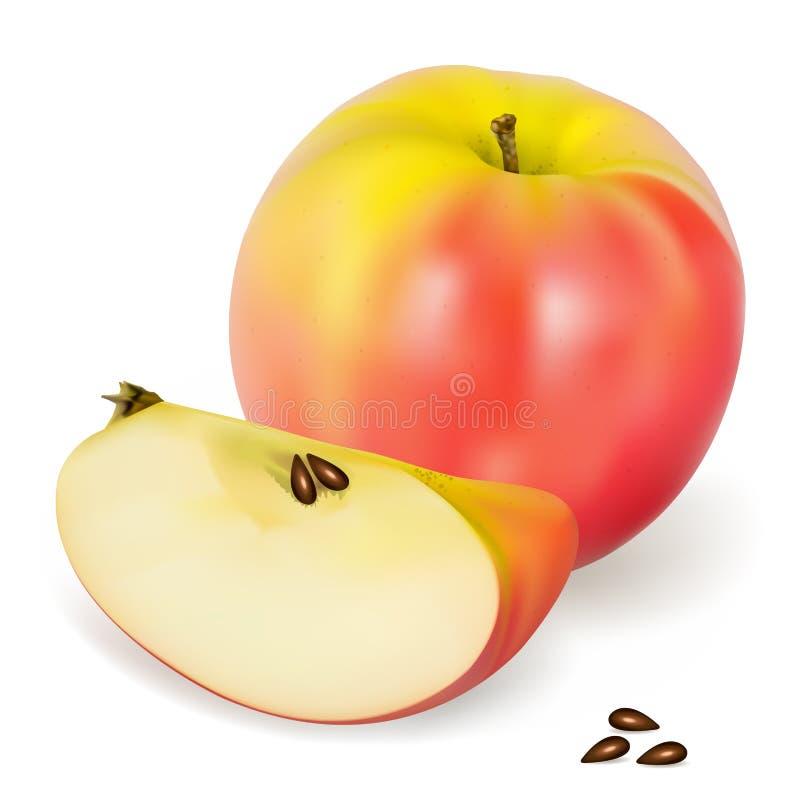 De Roze Dame van de appel stock illustratie
