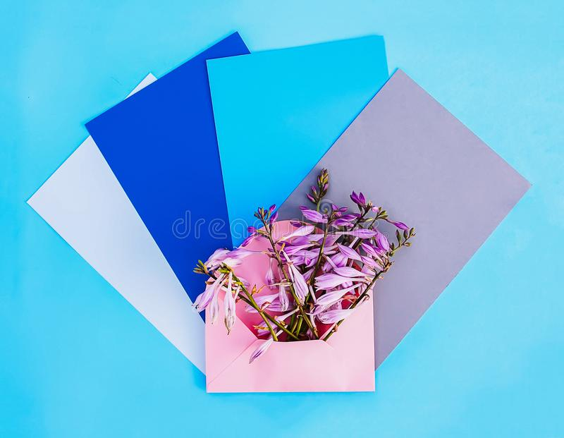 De roze document envelop met verse heldere tuin bloeit en lege document bladen op lichtblauwe achtergrond Feestelijk bloemenmalpl stock foto's