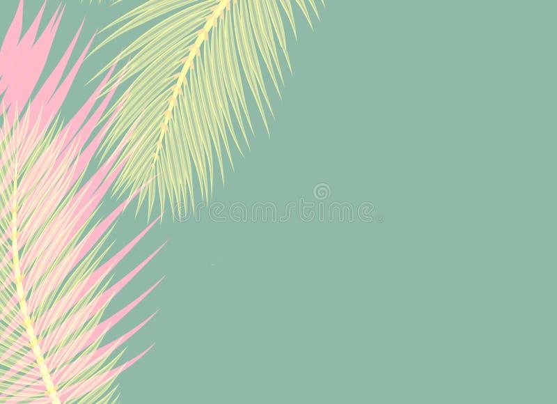 De roze en gele Palmen doorbladert blauw concept als achtergrond royalty-vrije illustratie