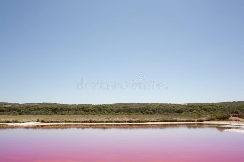 De roze Lagune van de meerhut bij Haven Gregory, Westelijk Australië, Australië stock afbeeldingen