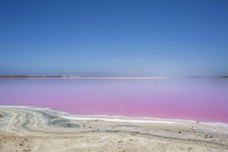 De roze Lagune van de meerhut bij Haven Gregory, Westelijk Australië, Australië stock foto