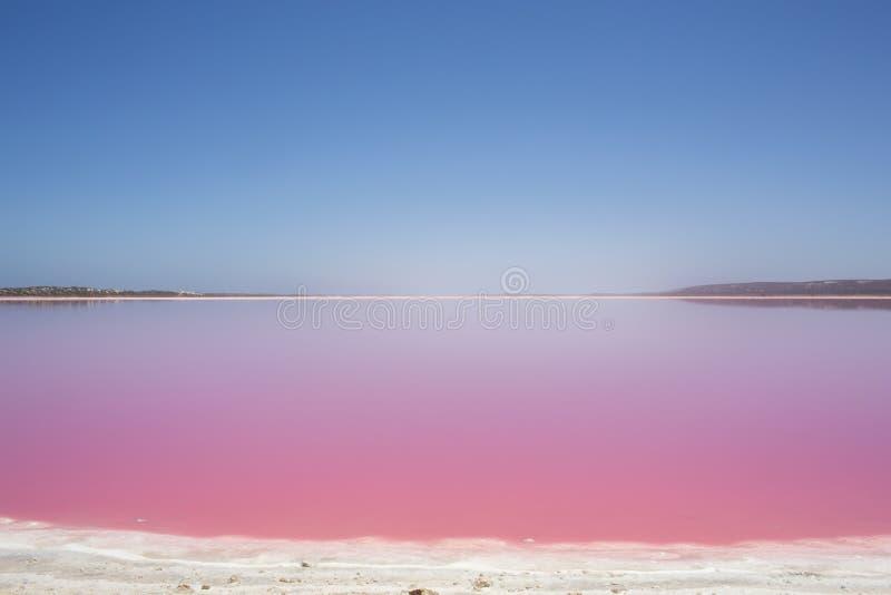 De roze Lagune van de meerhut bij Haven Gregory, Westelijk Australië, Australië royalty-vrije stock afbeeldingen