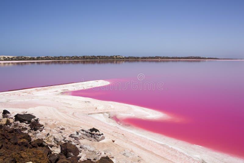 De roze Lagune van de meerhut bij Haven Gregory, Westelijk Australië, Australië stock afbeelding