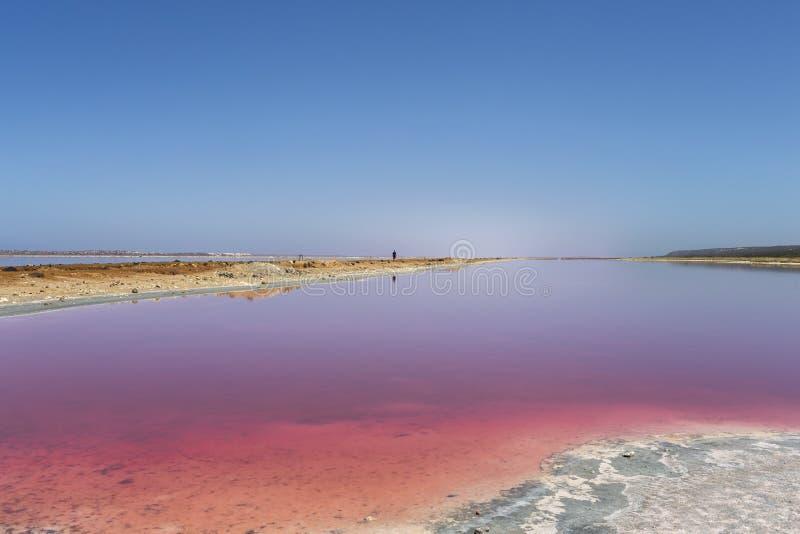 De roze Lagune van de meerhut bij Haven Gregory, Westelijk Australi?, Australi? stock foto