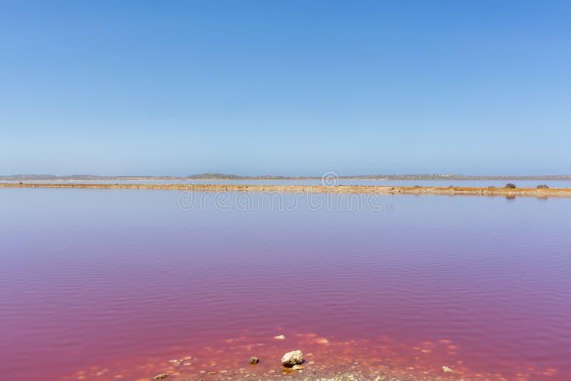 De roze Lagune van de meerhut bij Haven Gregory, Westelijk Australi?, Australi? stock afbeeldingen