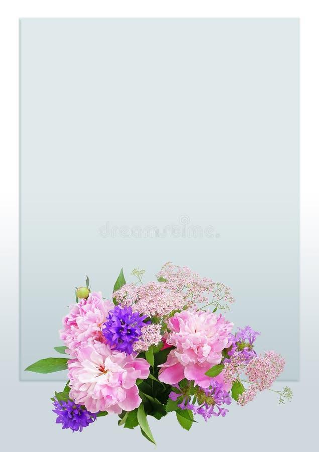 De roze pioenen van groetkaarten stock afbeelding