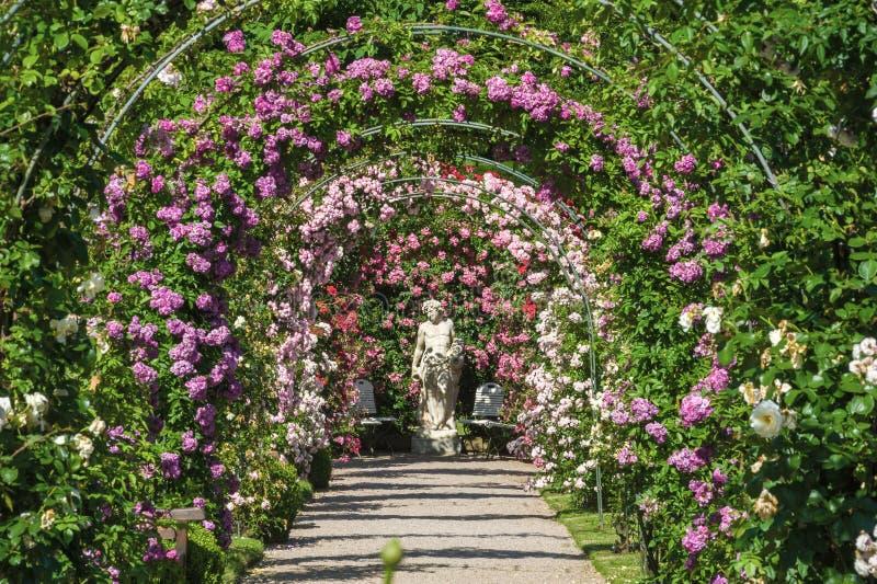 De roze tuin Beutig in baden-Baden stock foto